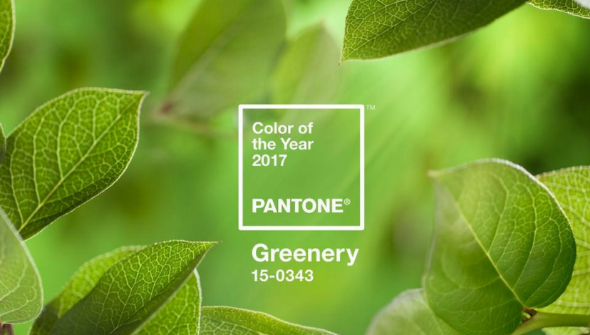 A Greenery Light on Color for 2017